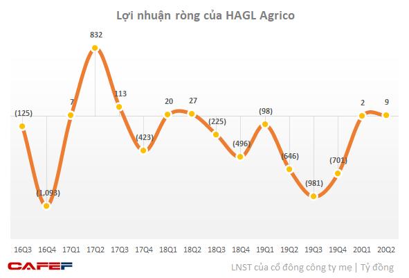 HAGL Agrico (HNG) thông báo dừng kế hoạch huy động 800 tỷ trái phiếu - Ảnh 1.
